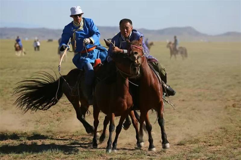 赛马、套马、打马印 (3)