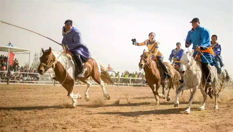 赛马、套马、打马印 (6)